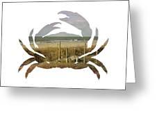 Crab Beach Greeting Card by Michael Colgate