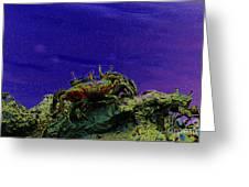 Crab Cakez 5 Greeting Card