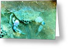 Crab With The Blues Greeting Card