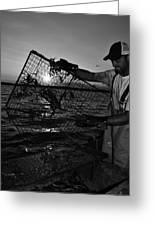 Crabbing On The Potomac Greeting Card