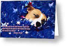 Cradled By A Blanket Of Stars And Stripes - Quote Greeting Card
