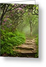 Craggy Steps Greeting Card