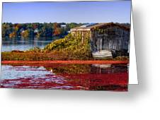 Cranberry Bog Farm II Greeting Card