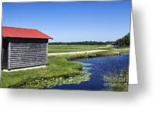 Cranberry Bogs Greeting Card