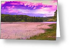 Cranberry Glade Lake Greeting Card