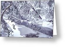 Cranberry River Winter Heavy Snow Greeting Card