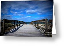 Crane Beach Greeting Card