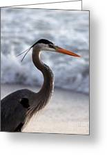 Crane By The Sea Greeting Card