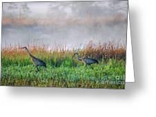 Cranes On Foggy Day Greeting Card