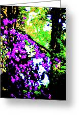 Crape Myrtles Abstract Greeting Card