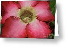 Craquelure Pink Flower Greeting Card