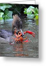 Crayfish? Greeting Card