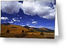 Crazy Blue Sky Greeting Card by Barbara Schultheis