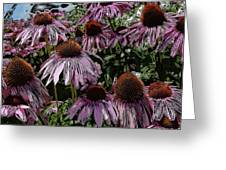 Crazy Flowers Greeting Card