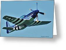 Crazy Horse From Air Show Greeting Card