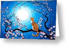 Creamsicle Kitten In Blue Moonlight Greeting Card