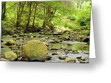 Creek 3 Greeting Card