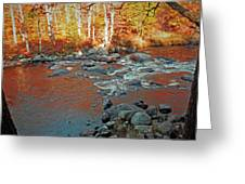 Creek 5  Greeting Card