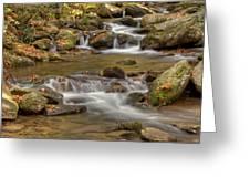 Creek 7 Greeting Card