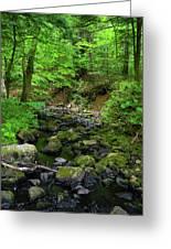 Creek Crossing In Ma Greeting Card