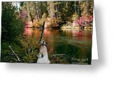 Creek Fall Greeting Card