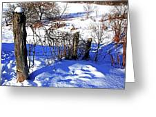 Creek Fenceline Greeting Card