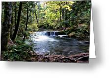 Creek, Frozen In Time Greeting Card