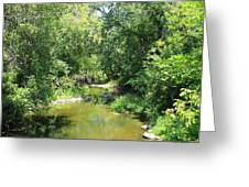 Creek In A Forest Greeting Card