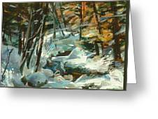 Creek In The Cold Greeting Card