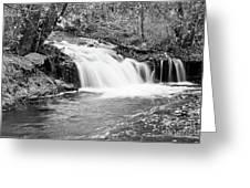 Creek Merge Waterfall In Black And White Greeting Card