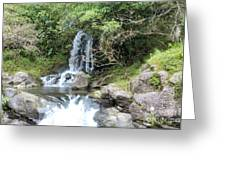 Creek On Kalalaua Trail Greeting Card