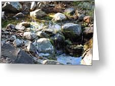 Creek Reflections 1 Greeting Card