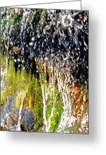 Creek Running Through Moss-covered Stones 1 Greeting Card