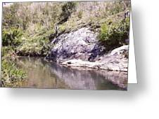 Creek Side Greeting Card