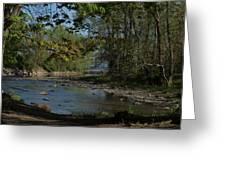 Creek To Lake Greeting Card