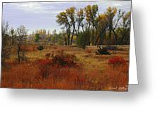 Creek Valley Beauty Greeting Card