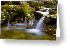 Creek With Icicles Greeting Card