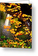 Creekside Colors Greeting Card