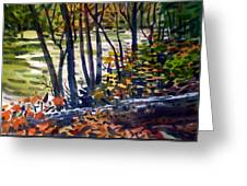 Creekside Tranquility Greeting Card
