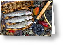 Creel With Native Trout  Greeting Card