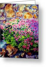 Creeping Phlox Greeting Card by Bill Meeker