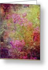 Crepe Garden 1776 Idp_2 Greeting Card