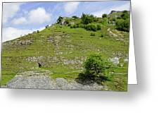 Cressbrook Dale Opposite To Tansley Dale Greeting Card