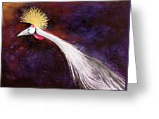 Crested Bird Greeting Card