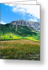 Crested Butte Aspens Greeting Card