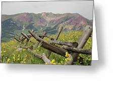 Crested Butte Color Greeting Card