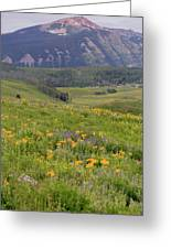 Crested Butte Valley Greeting Card