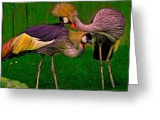 Crested Cranes Greeting Card