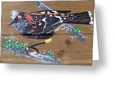 Crested Honeycreeper Greeting Card