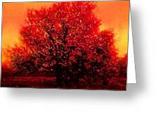 Crimson Blossoms Greeting Card